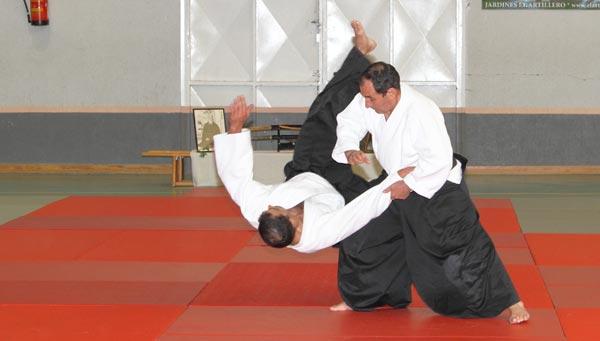 aikido en mora